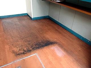 床面の洗浄および樹脂ワックスコーティング清掃